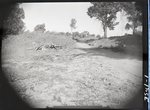 Chucalissa Native American Mound Site (40SY1, Unit 3) - Shelby County, TN 1955.03/R1-F1