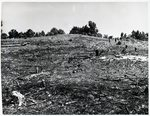 Chucalissa Native American Mound Site (40SY1, Unit 4) - Shelby County, TN 40SY1-4/R7-F5
