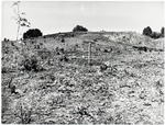 Chucalissa Native American Mound Site (40SY1, Unit 4) - Shelby County, TN 40SY1-4/R7-F4