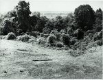 Chucalissa Native American Mound Site (40SY1, Unit 6) - Shelby County, TN 40SY1-6/R7-F10
