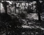 Chucalissa Native American Mound Site (40SY1, Unit 6) - Shelby County, TN 40SY1-10/X-2