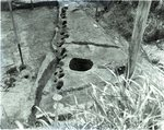 Chucalissa Native American Mound Site (40SY1, Unit 6) - Shelby County, TN 40SY1-6/R9-F8