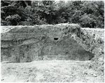 Chucalissa Native American Mound Site (40SY1, Unit 6) - Shelby County, TN 40SY1-6/R9-F32