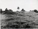 Chucalissa Native American Mound Site (40SY1, Unit 5) - Shelby County, TN 40SY1-5/R7-F8