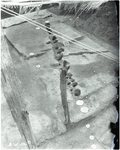 Chucalissa Native American Mound Site (40SY1, Unit 6) - Shelby County, TN 40SY1-6/R6-F10
