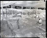Chucalissa Native American Mound Site (40SY1, Unit 6) - Shelby County, TN 40SY1-6/R7-F4