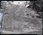 Chucalissa Native American Mound Site (40SY1, Unit 6) - Shelby County, TN 40SY1-6/R6-F1