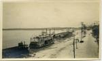 Memphis, Tennessee, riverfront, circa 1900
