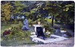 Galloway Springs in Overton Park, Memphis, TN, c. 1910