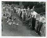 Memphis Zoo, 1983