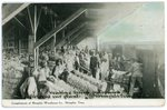 Memphis Warehouse Company cotton plant, Memphis, circa 1910