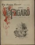 Sunday Times-Figaro, Memphis, 25:07, 1896