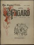 Sunday Times-Figaro, Memphis, 25:12, 1896