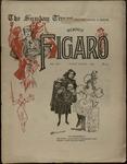 Sunday Times-Figaro, Memphis, 25:13, 1896