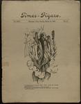 Sunday Times-Figaro, Memphis, 25:15, 1896