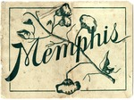 Latest Souvenir View Book of Memphis, Tennessee, 1906