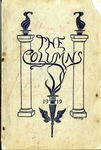 The Columns yearbook, West Tennessee State Normal School, Memphis, 1919